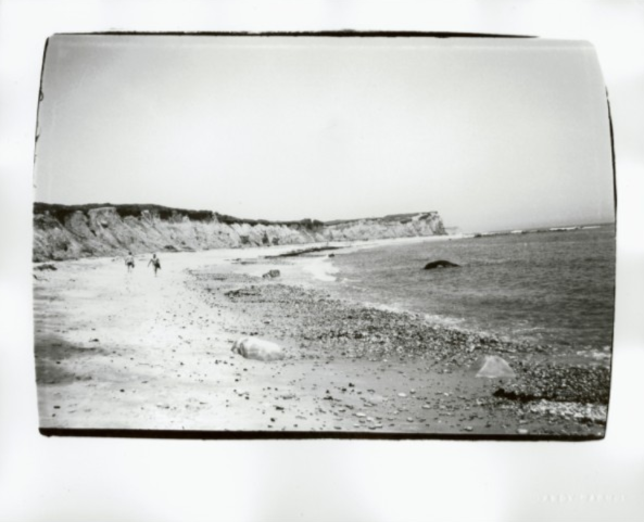 Montauk Beach by Andy Warhol. Photo courtesy of Christie's.