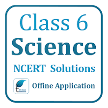 NCERT Solutions for Class 6 Science offline Download on Windows