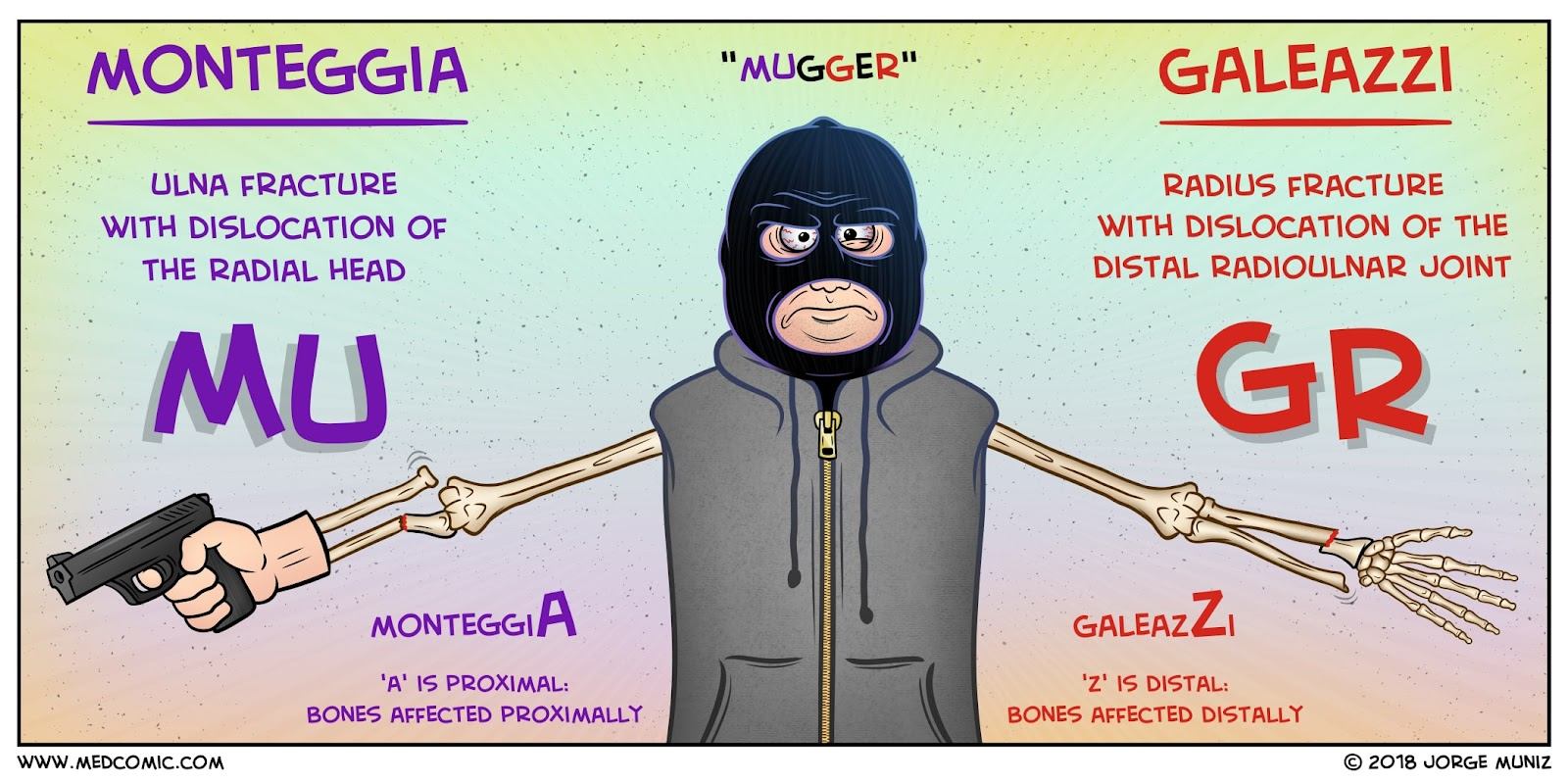 Image result for mugr fracture