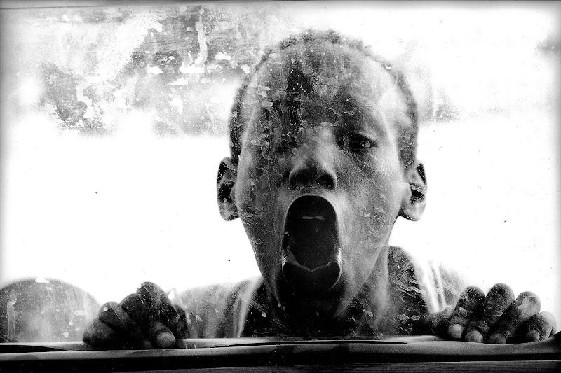 Dal vetro. di Alexx70