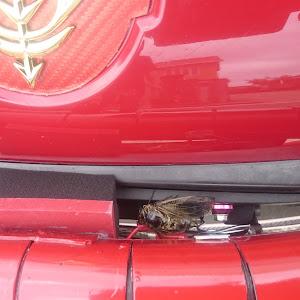 フェアレディZ Z33のカスタム事例画像 まぁ専用Zさんの2020年07月12日12:05の投稿