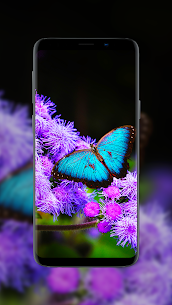 💃 Wallpapers for Girls – Girly backgrounds Apk  Download For Android 10