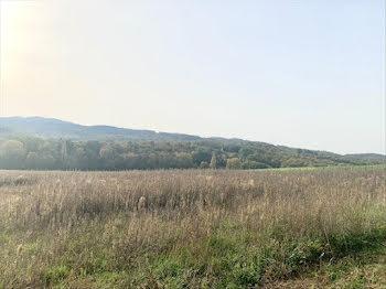 terrain à Madière (09)