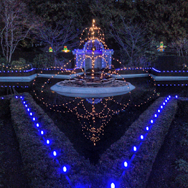 Christmas lights by Kathy Dee - Public Holidays Christmas ( lights, canada, park, christmas, night )
