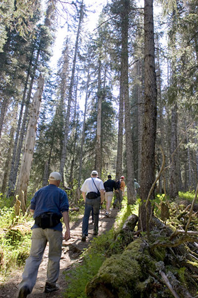 Take a hike! Trails around Skagway range from easy coastal strolls to strenuous alpine ascents.