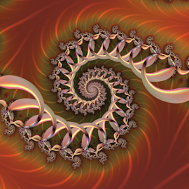 Spiral 69 by Cassy 67 - Illustration Abstract & Patterns