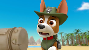 Sea Patrol: Pirate Pups to the Rescue thumbnail