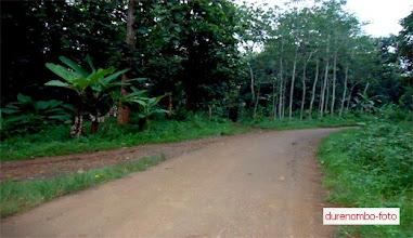 Photo: Salah satu persimpangan di durenombo