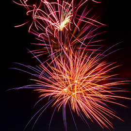 Start of Summer wo - 2016 by Dave Skorupski - Public Holidays July 4th ( orange, 4thofjuly, explosions, joy, white, travel, fun, dusk, fire, fourth, explode, adventure, red, blue, color, happy, independence, fireworks, night, day, celebration, 4th, celebrate, evening, black,  )