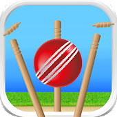 Cricket - Defend the Wicket