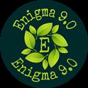 Enigma 9.0 icon