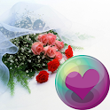 Wedding HD Wallpapers icon