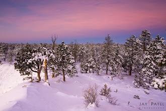 Photo: Bryce Canyon National Park, Utah (UT), USA