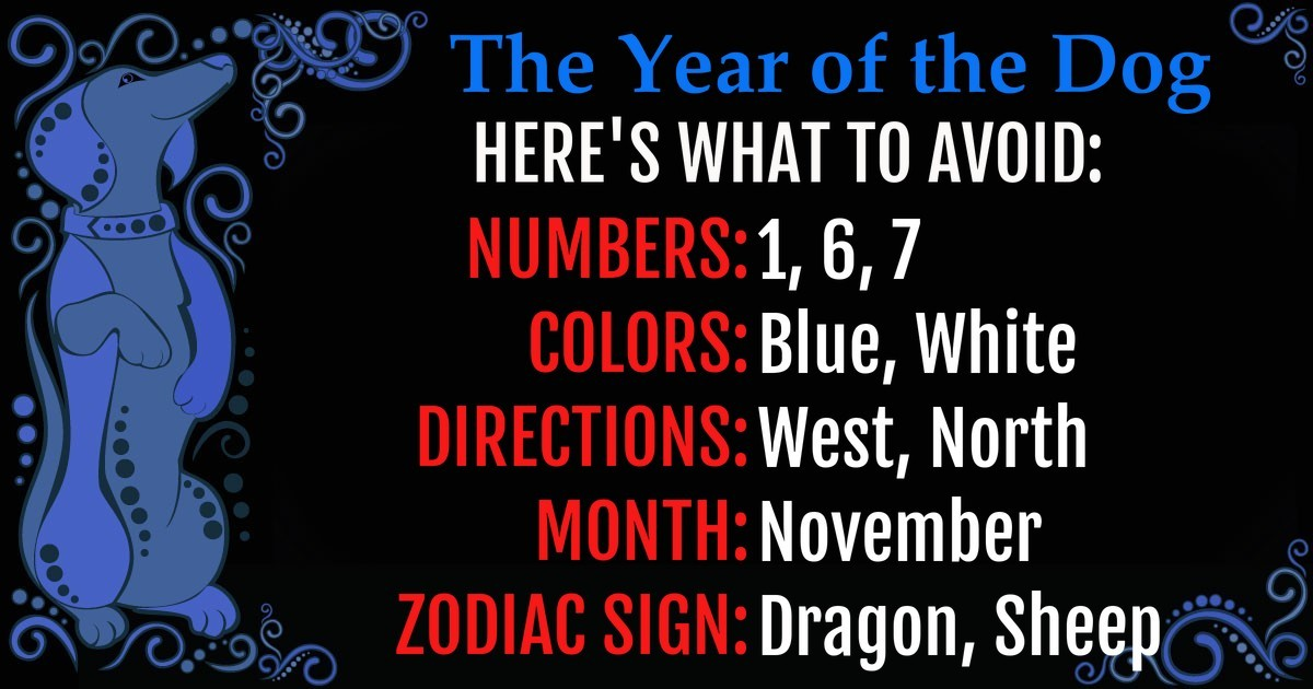 Chinese Zodiac] What Should You Avoid This Year? – PlayBrain