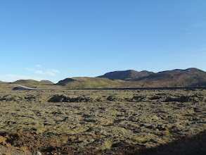 Photo: Moss-covered lava fields - we saw a lot of this in Iceland!