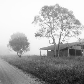 Old Barn by Graham MacDougall - Landscapes Weather ( shed, barn, fog, armidale, kellys plains, landscape, black and white, b and w, b&w, monotone, mono-tone )