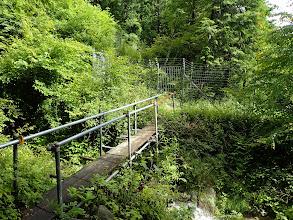 橋を渡って保護柵を通る