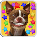 DOG SMILES LIVE WALLPAPER icon