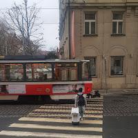 Road Crossing di