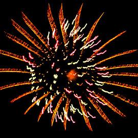 Red Burst by Jennifer  Loper  - Public Holidays July 4th ( red, orange, white, july 4th, fireworks )