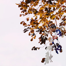 Wedding photographer Aleksey Cibin (Deandy). Photo of 08.11.2017