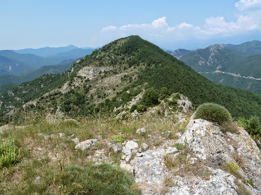 Puig de la Gavarra