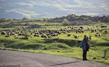 Photo: Paikallinen lammaspaimen reittimme varrella