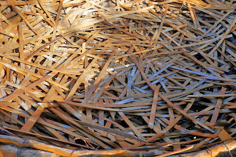 Photo: As you can see from this interior view, the nest is made of laths.