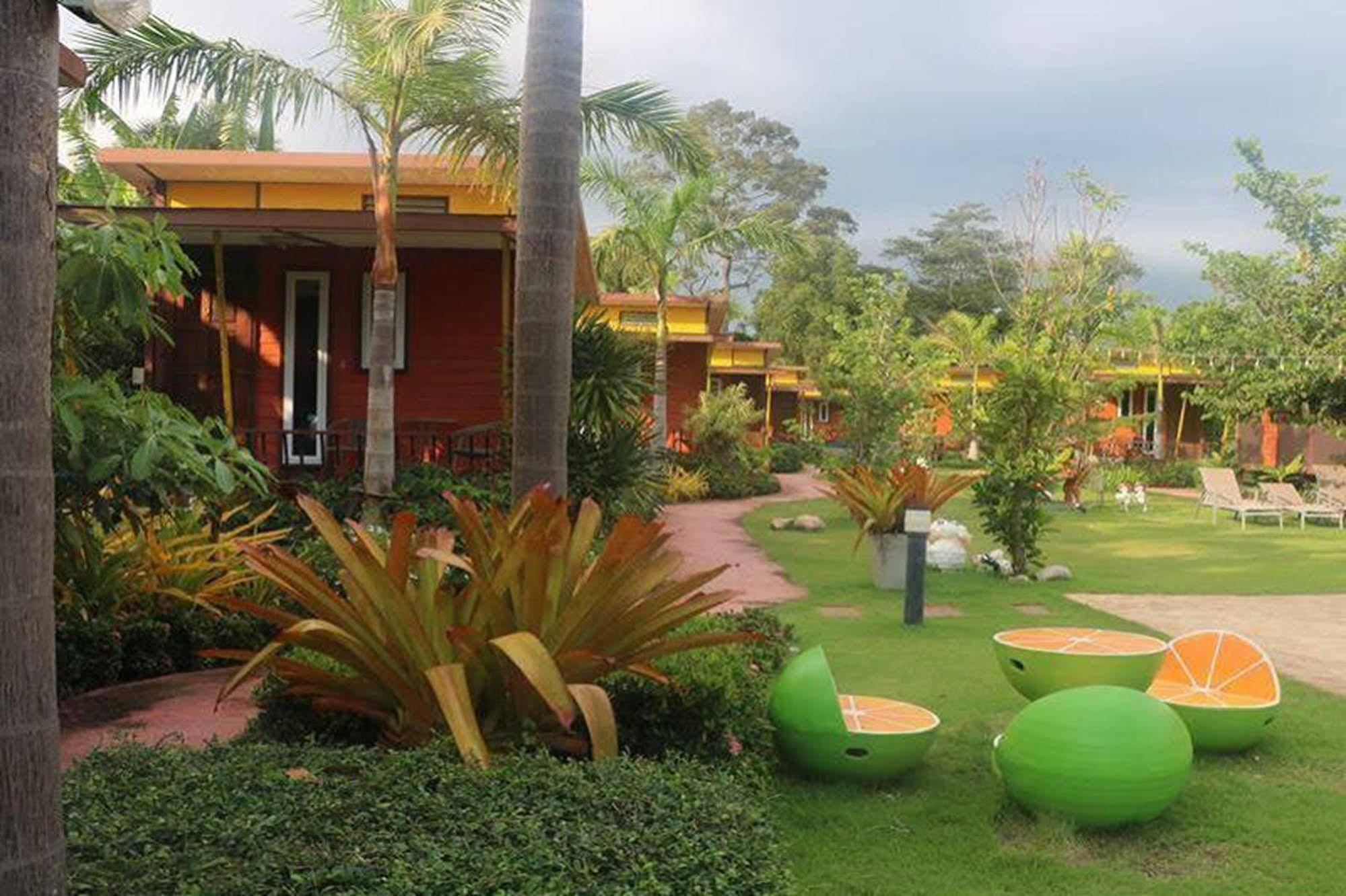 The Toy Art Resort