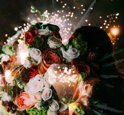 Свадебный фотограф Анна Руданова (rudanovaanna). Фотография от 03.11.2017