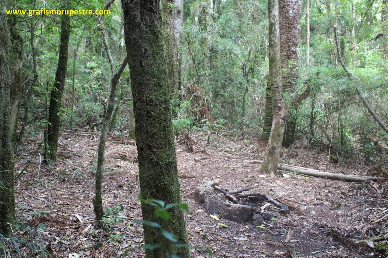 À direita local de acampamento na mata, próximo a riacho à esquerda.