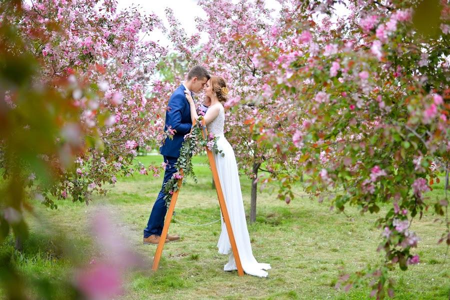 शादी का फोटोग्राफर Anna Timokhina (Avikki)। 18.05.2016 का फोटो