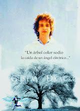 Photo: Un árbol color sodio...