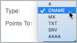 From the Type drop-down list, CNAME is selected as the record type.