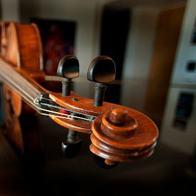 Violin by Cristobal Garciaferro Rubio - Artistic Objects Musical Instruments ( music, musical instrument, string, wood violin, 20th century )