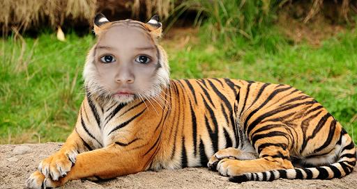 Tiger Photo Editor