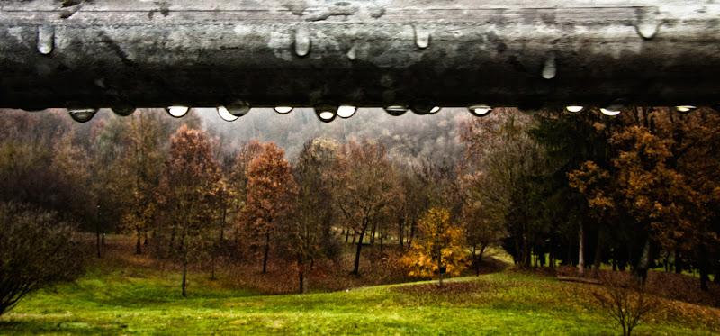 pioggia d'autunnpo di angeluci