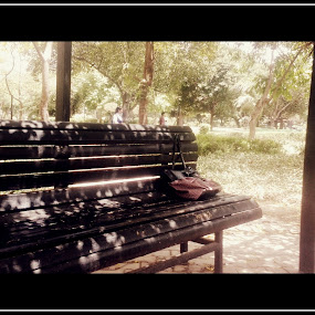 an empty bench.. by Shafaly Sharma - City,  Street & Park  City Parks ( pwcbenches )