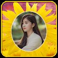Sunflower Photo Frames APK