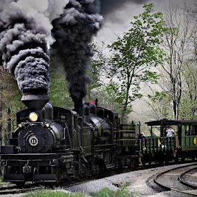 Pulling Hard by Chuck  Gordon  - Transportation Trains ( steam train )