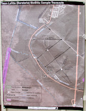 Photo: Map of the area. We were stationed at the Ed. Center.