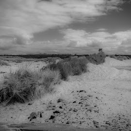 Outpost by Michael Connor - Landscapes Beaches ( sand, lookout, beach, black and white, clouds, building, outpost )