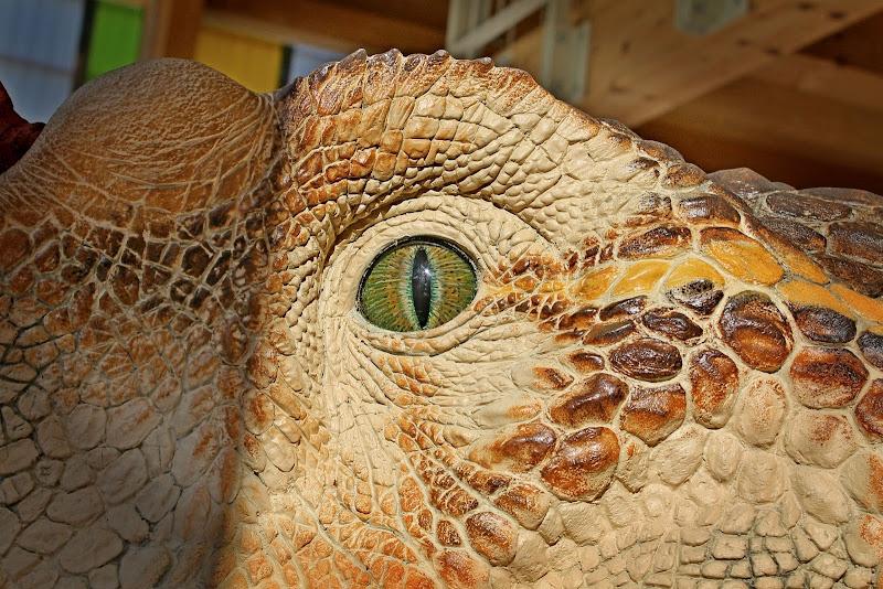 T-rex di GVatterioni