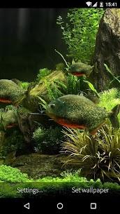 3D Fish Aquarium Wallpaper HD 5