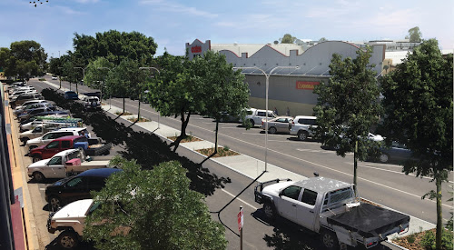 An artist's impression of how Maitland Street could look like if trees were planted down the median strip.