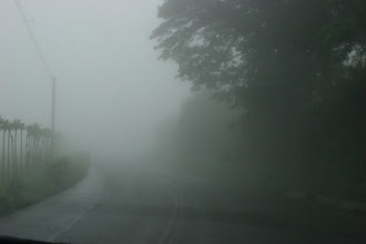 Photo: This is what driving through the clouds of Costa Rica's highlands looks like