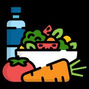 Kuldeep Arya Veer Desi Diet Planner