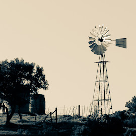 Timeless by Adell du Plessis - Artistic Objects Industrial Objects ( field, vintage, windmill, farmland, landscape )