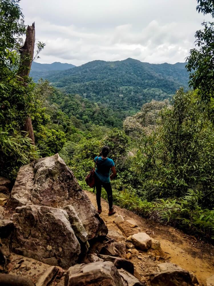 hiking+taman+negara+malaysia