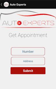 Auto Experts - náhled